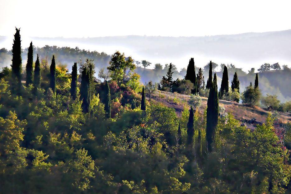 fsm-blog-toscana01-crete604